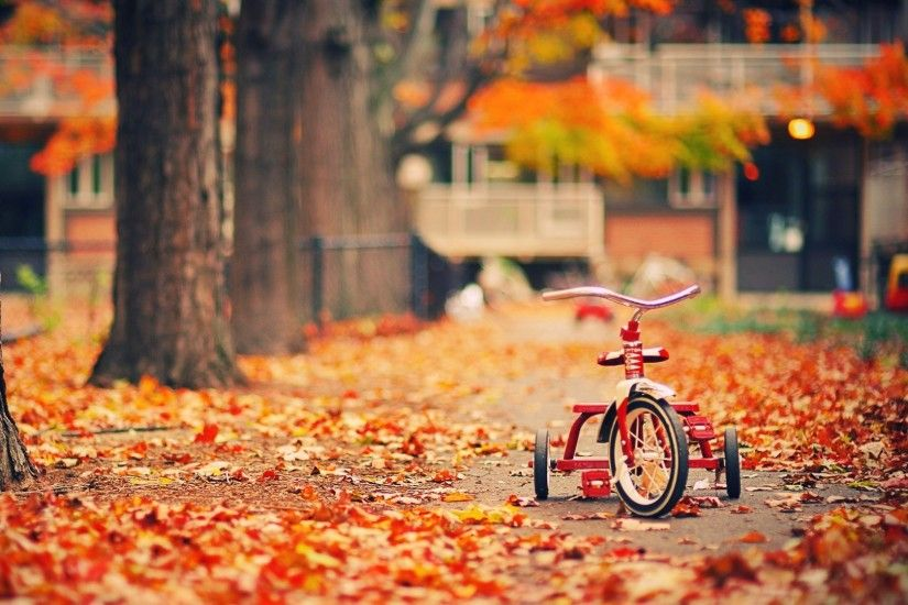 Children's bicycle on the fall foliage