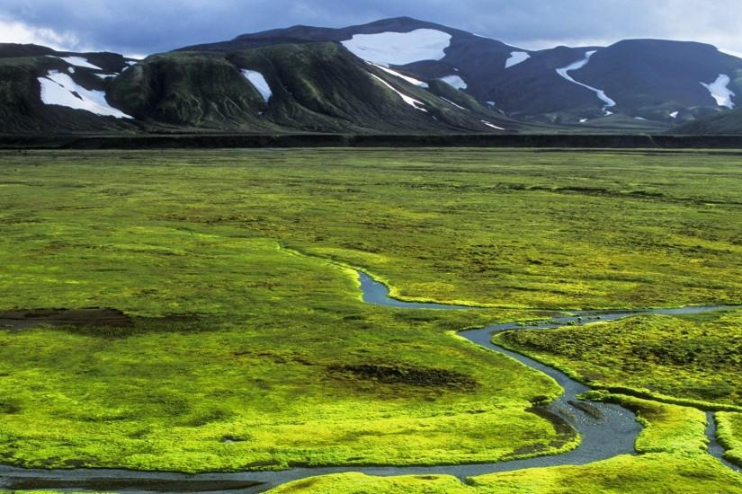 Green plain in Iceland