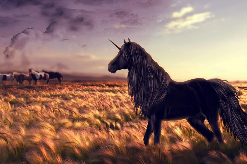 horse backgrounds 2560x1440 tablet