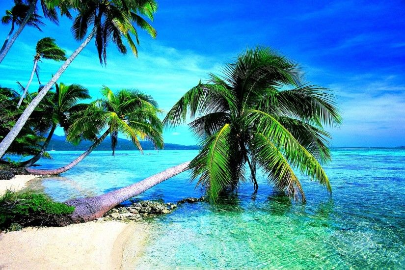 Download tropical beach images wallpapers Desktop Backgrounds for #7255