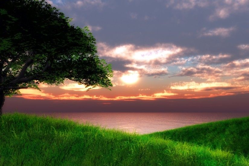 Related Wallpapers from Dark Woods Wallpaper. Green Landscape with Sea at  Sunset wallpaper