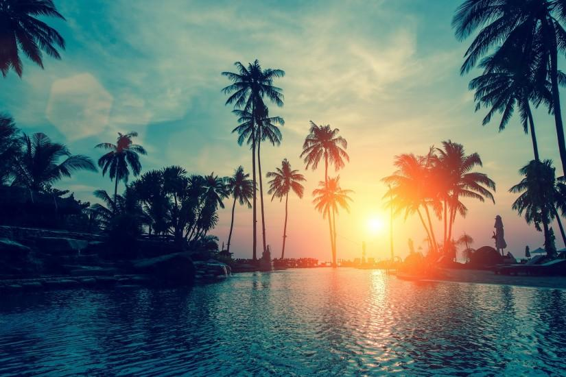 Tags: Sunset, Palm trees ...