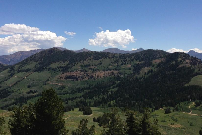 File:2013-07-12 12 28 20 Coon Creek Peak viewed from the