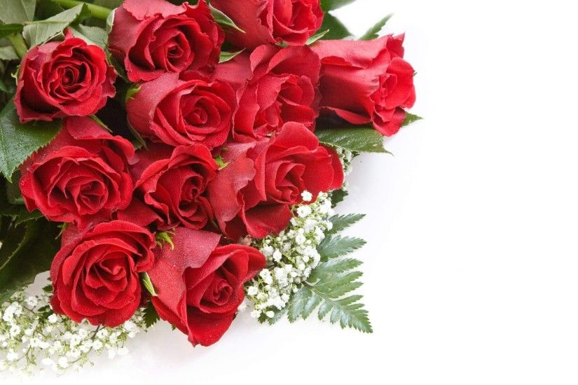 Red Roses Beautiful Hd Wallpapers For Desktop