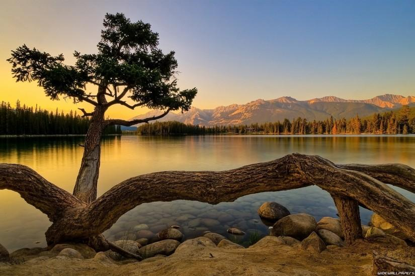 best nature background images
