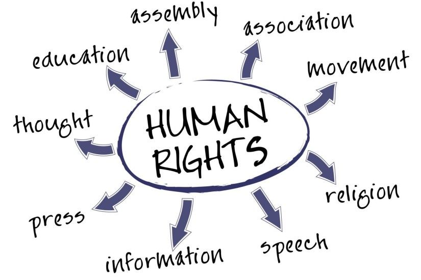 Have basic rights- known or unknown-humans or animals. Right to live, earn,  eat and to be at peace all the life time