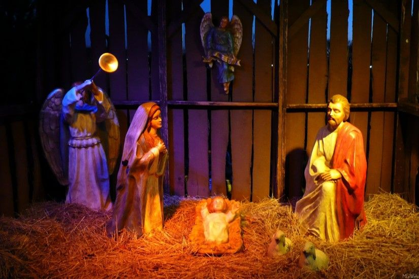 Here is a picture of the Nativity scene at the National Christmas Tree  display.