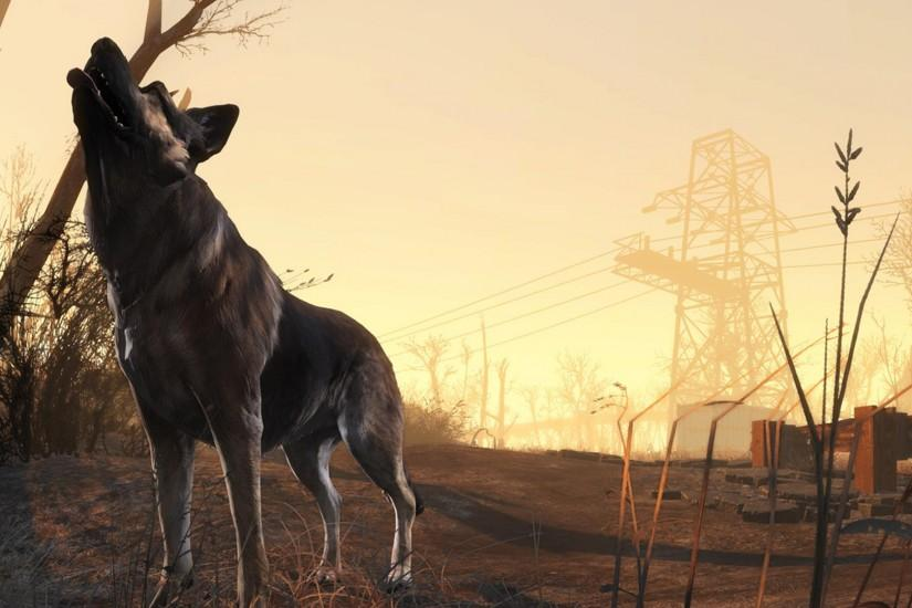 Fallout 4 HD Wallpaper Dogmeat