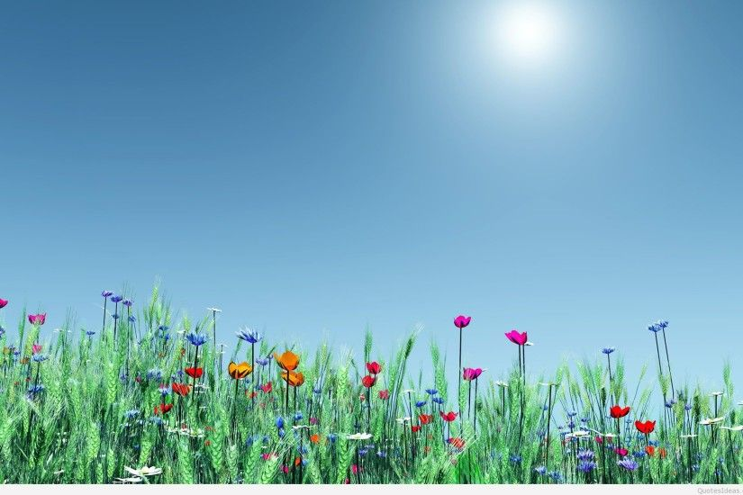 ... 5004-nature-wallpaper-flowers-spring-wallpapers-images-1920x1200 ...