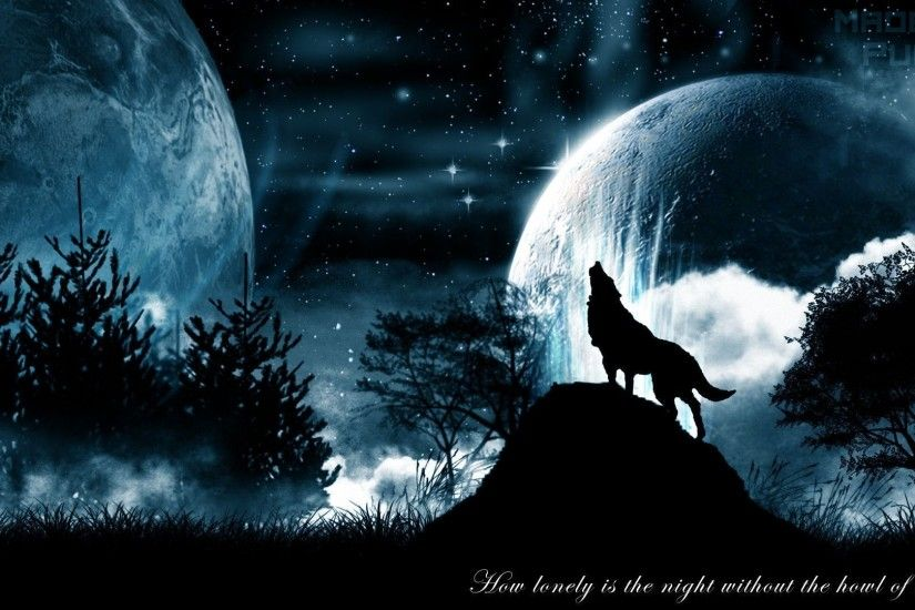 Black Wolf Howling Hd Wallpaper - image #738789