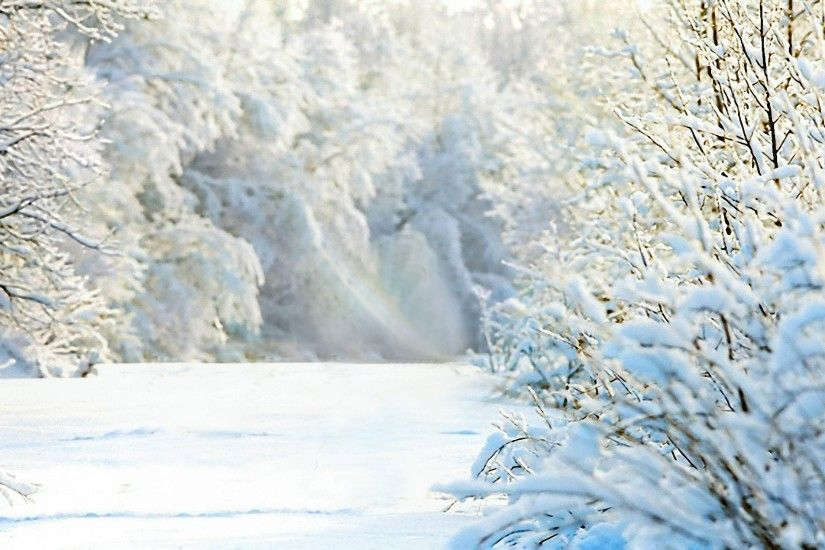 winter picture - Background hd - winter category