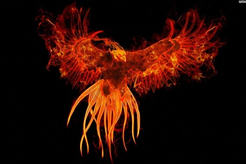 Phoenix Bird 22 Widescreen Wallpaper Wallpaper