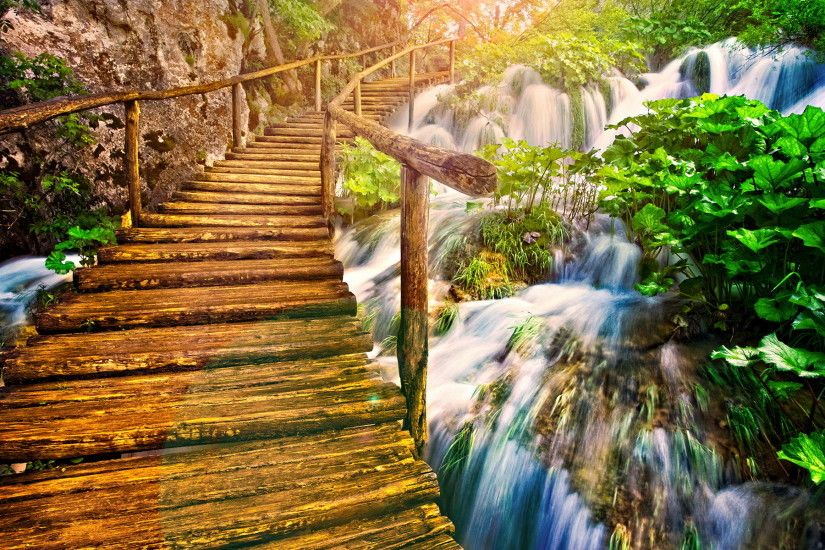 Beautiful Wooden Bridge On The Nature Wallpaper Full HD Wallpaper