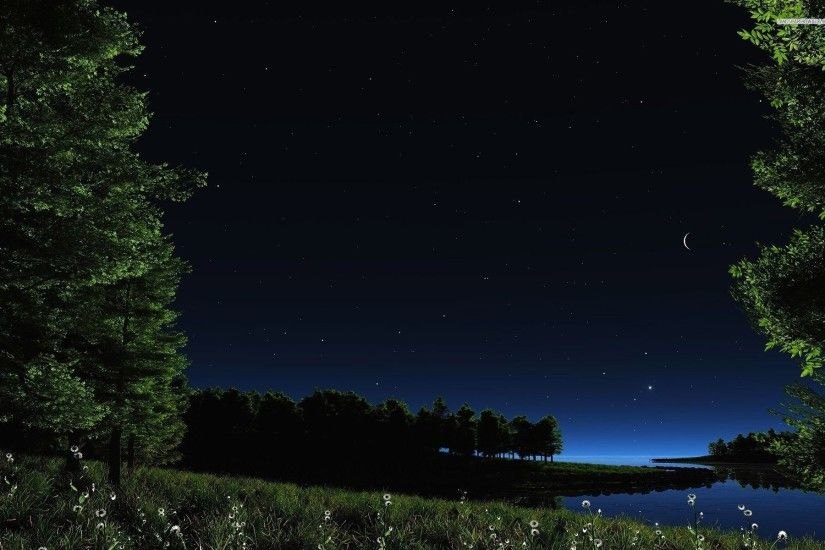 Amazing Starry Night On The Lake Wallpaper