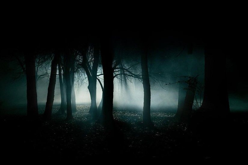 creepy blue black dark night white forest smoke woods gothic 1024x768  wallpaper