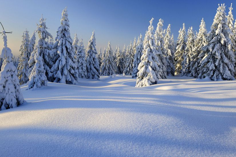 Winter HD Wallpapers Backgrounds Wallpaper