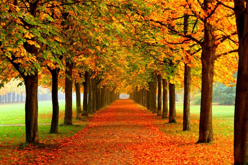 Fall-Desktop-Background-2 Autumn Wallpaper Examples for Your Desktop  Background