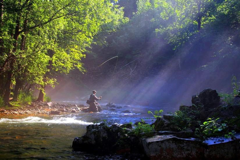 Trout Fishing Wallpaper | fly fishing picture fly fishing painting fly  fishing trout fly fishing .