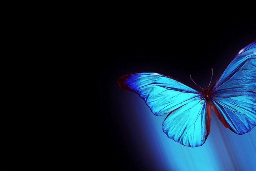 top butterfly wallpaper 1920x1080 cell phone