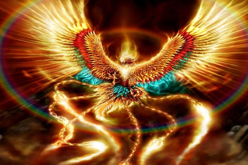 Fantasy phoenix bird wallpaper download.