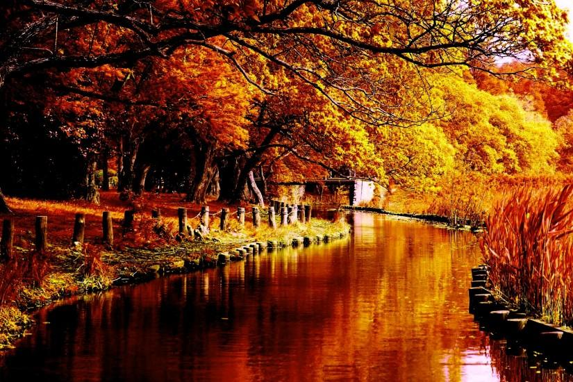 top autumn background 1920x1200 picture