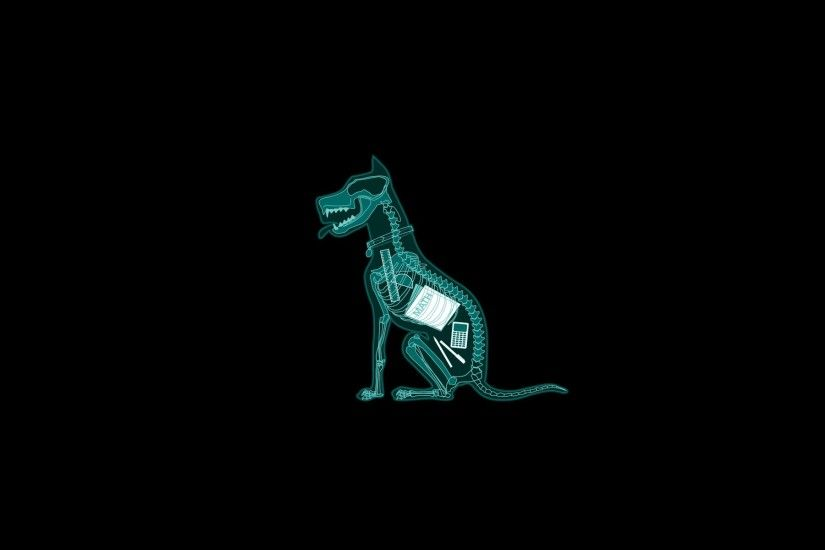 Anatomy Black Background Dark Dogs Funny Mathematics Minimalistic Simple  X-Ray ...