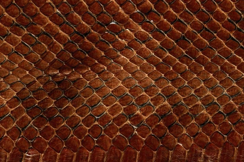 Preview wallpaper texture, leather, snake, scales, background 1920x1080