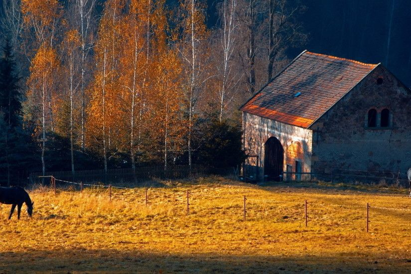 Horses rustic farm barn landscapes buildings autumn fall trees wallpaper |  1920x1080 | 31714 | WallpaperUP