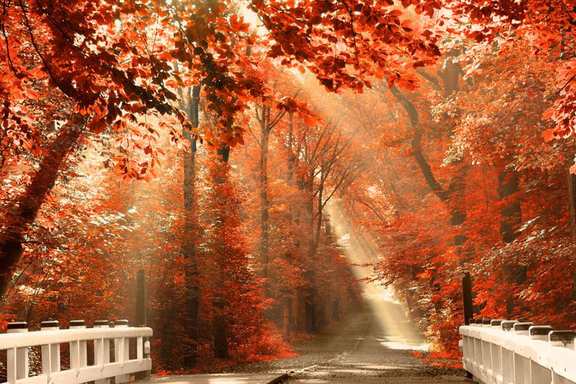 21WbVG Autumn Wallpaper Examples for Your Desktop Background