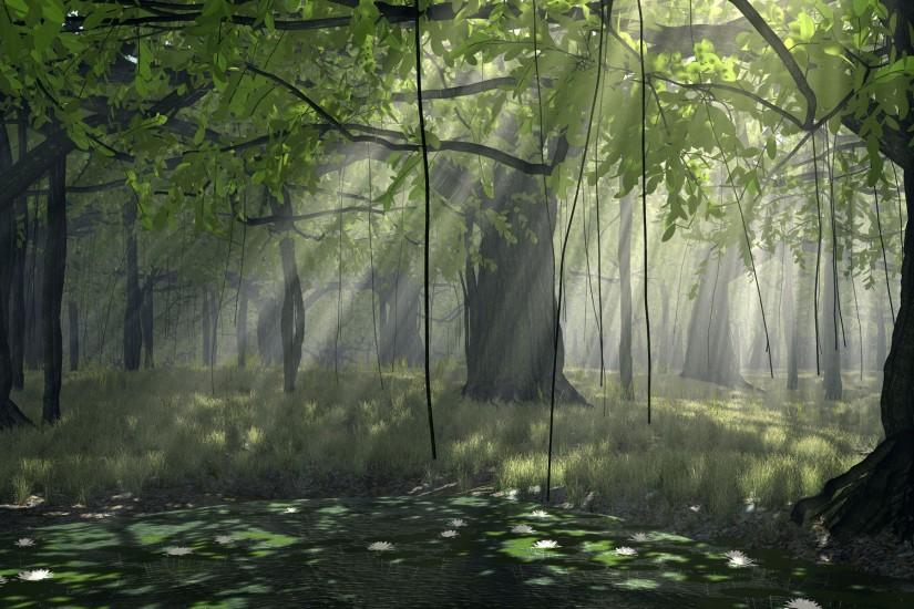 Black And White Pictures Anime Forest 27 Wide Wallpaper. Black And White  Pictures Anime Forest 27 Wide Wallpaper