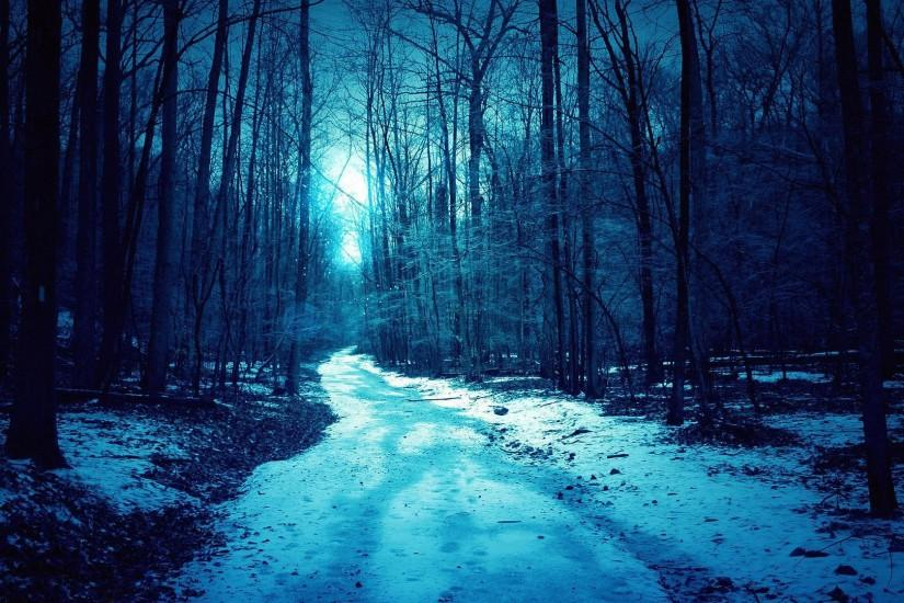Light snow in the woods wallpaper
