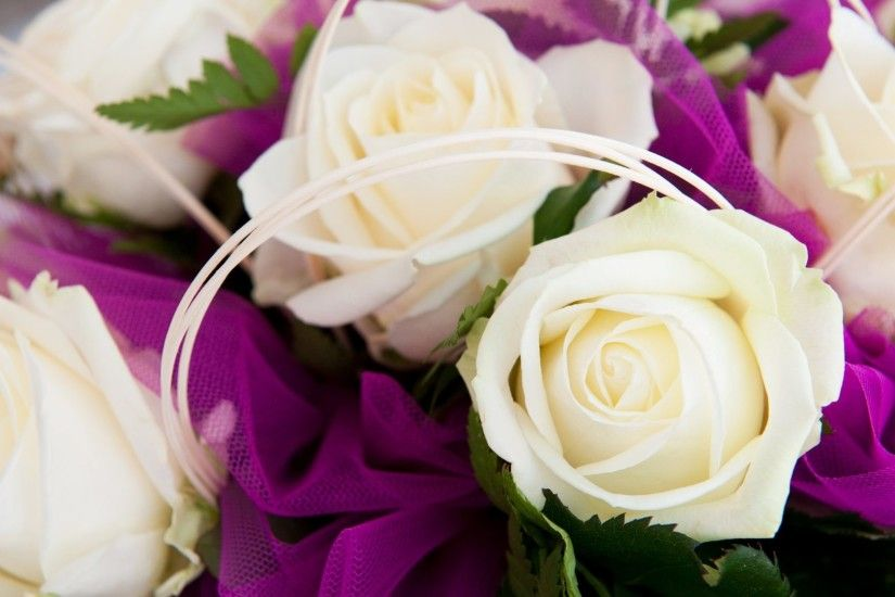 Flowers - Beauty White Love Purple Bouquet Soft Pure Lovely Roses Wallpaper  Flowers Rose for HD