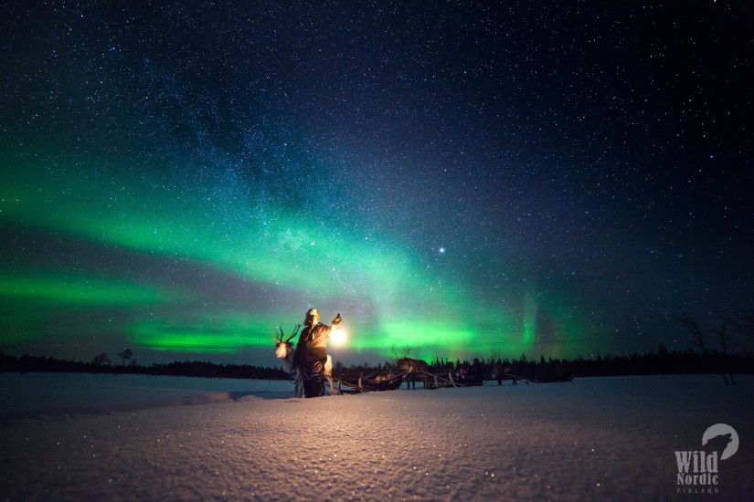 Reindeer Safari to search for the Northern Lights 3 hours