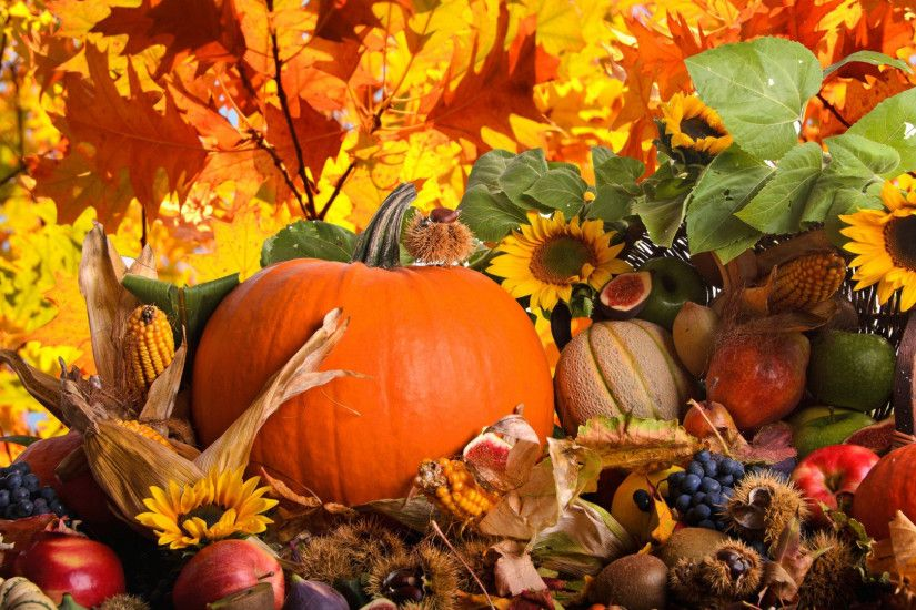 Collection of Fall Themed Wallpaper on Spyder Wallpapers Fall Themed Desktop  Backgrounds