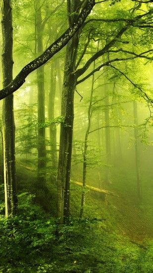 Fantasy Green Forest Android Wallpaper ...