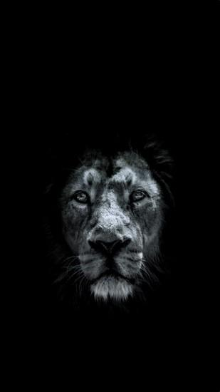 lion background 1080x1920 for full hd