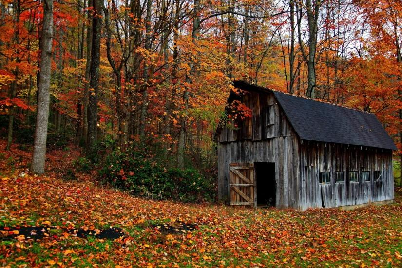 autumn fall leaves rustic wallpaper | 1920x1200 | 32170 | WallpaperUP .