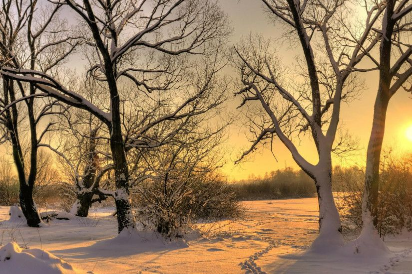 Sunset in winter nature wallpaper. Description:sunset ...