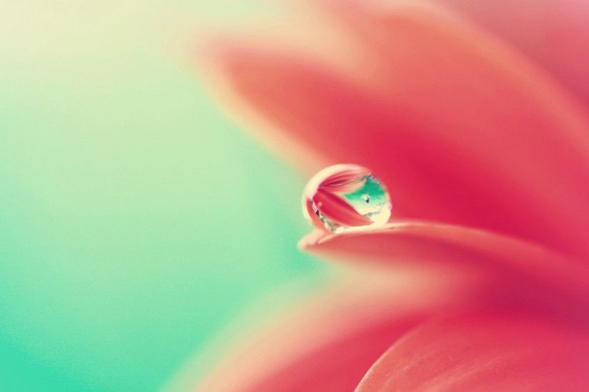 beautiful water drop wallpaper 26127