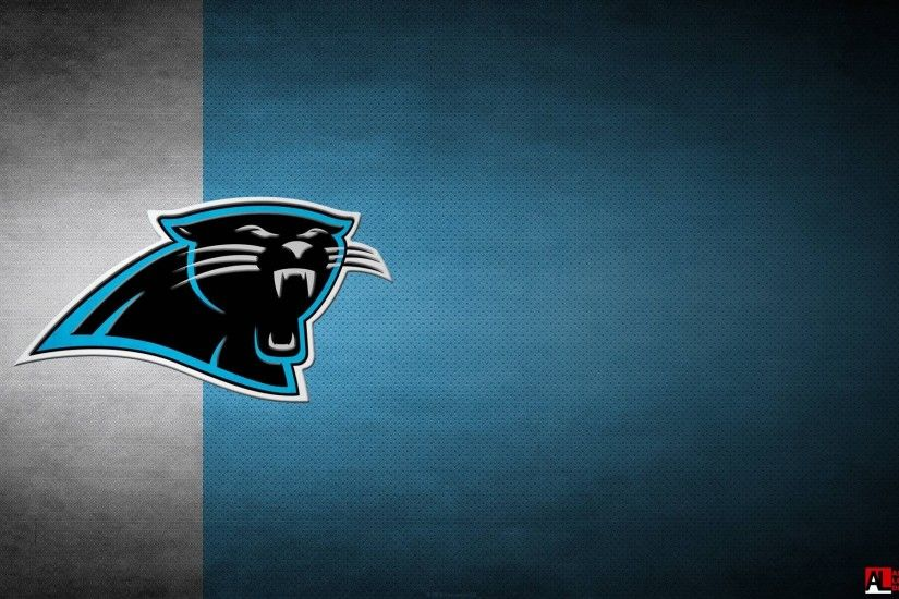 Wallpapers for Desktop: carolina panthers picture, 638 kB - Berton Murphy