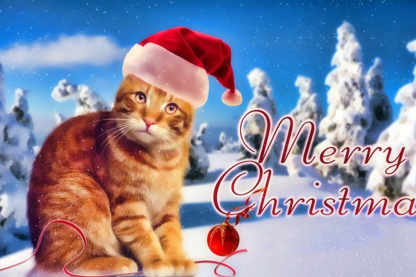 Marry-Christmas-Cat-Wallpaper