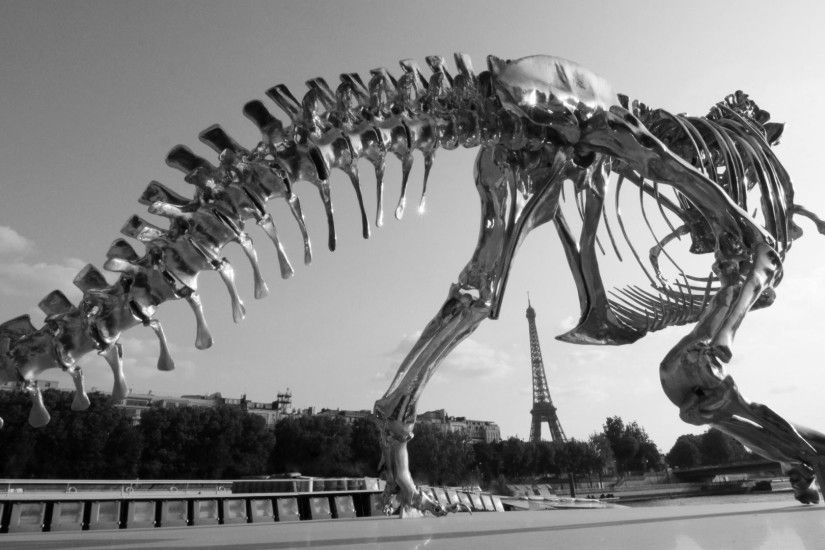 T-Rex Skeleton HD Desktop Wallpaper