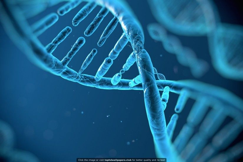 DNA Structure HD wallpaper for your PC, Mac or Mobile device
