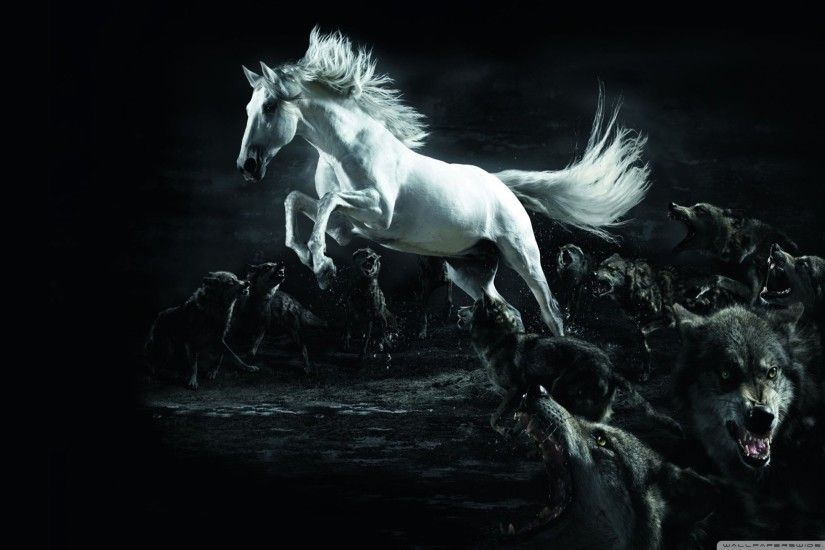 Horse and Wolves HD Wide Wallpaper for Widescreen