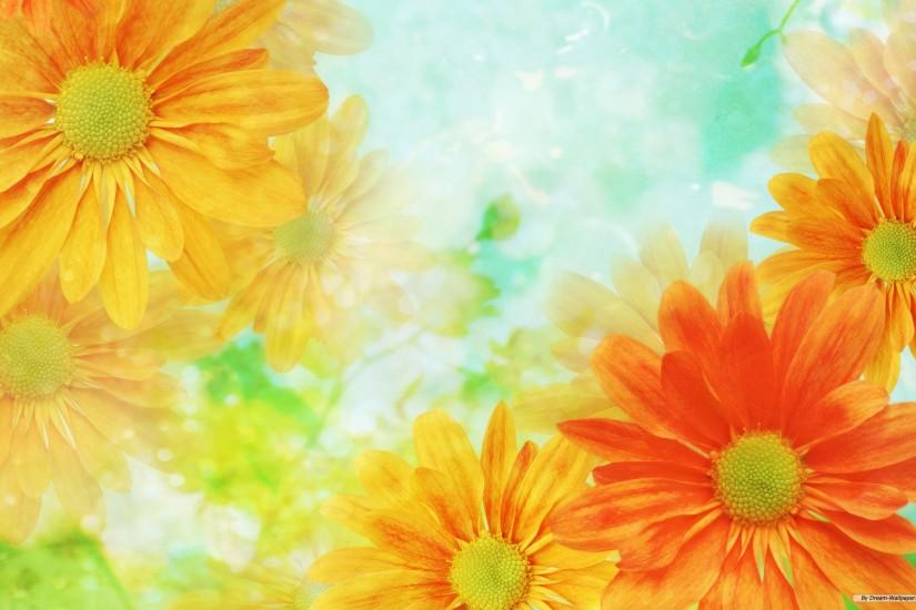 Flower Backgrounds Download HD Wallpapers #3644