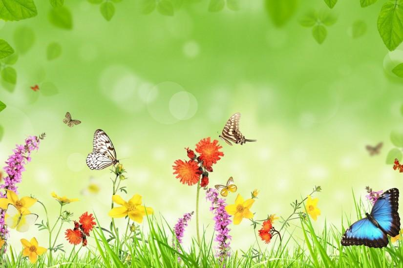 free butterfly background 2560x1600