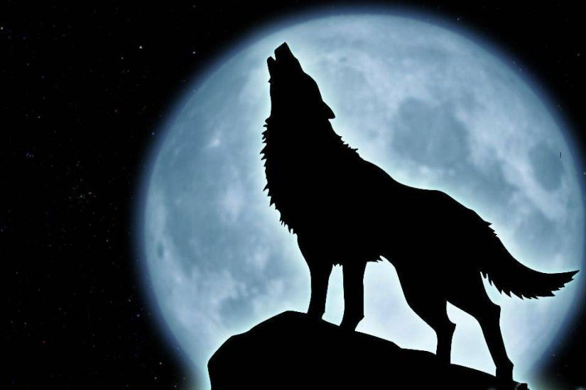 Howling Wolf Wallpaper 10927 Hd Wallpapers in Animals - Imagesci.com