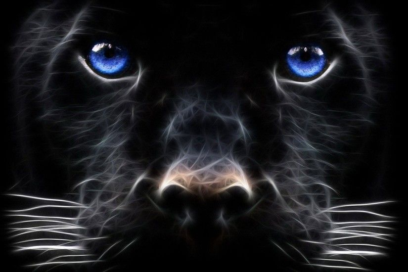 Black Leopard Backgrounds - Wallpaper Cave