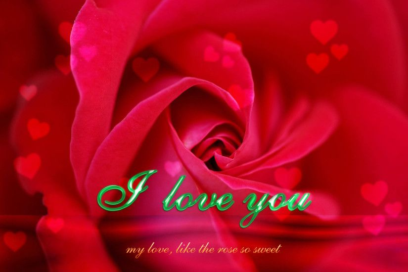 Red Rose I Love You Wallpaper