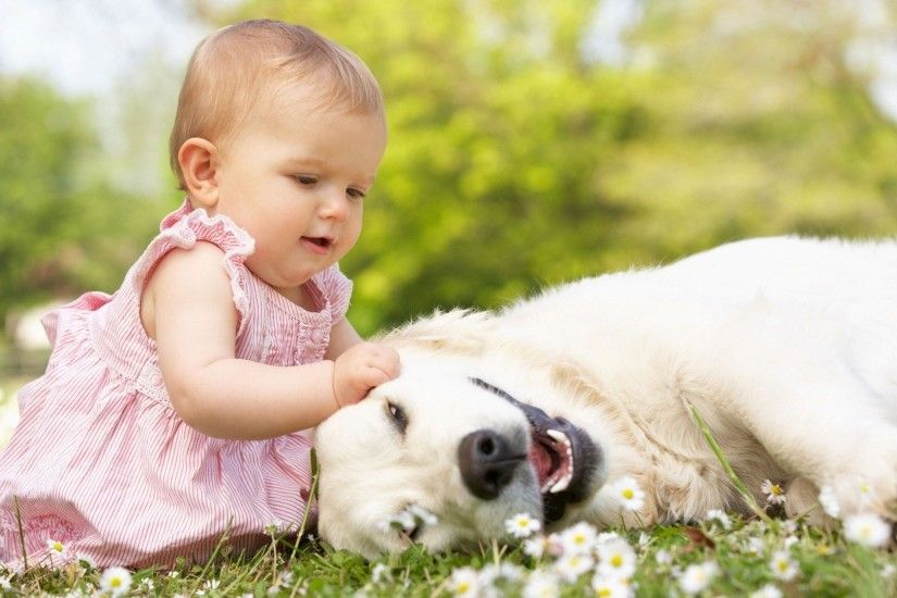 cute baby with dog hd wallpaper